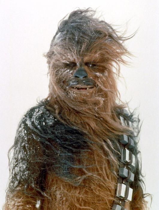 Chewbacca sous la neige